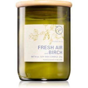 Paddywax Eco Green Fresh Air & Birch vonná svíčka 226 g