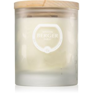 Maison Berger Paris Aroma Wake Up vonná svíčka Woody Breeze 180 g