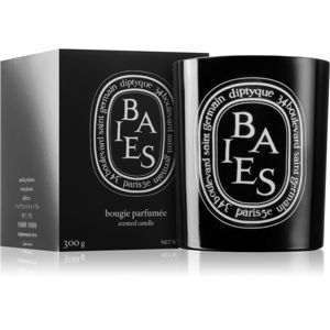 Diptyque Colored Baies vonná svíčka 300 g