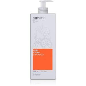 Framesi Morphosis Purifying čisticí šampon proti lupům 1000 ml
