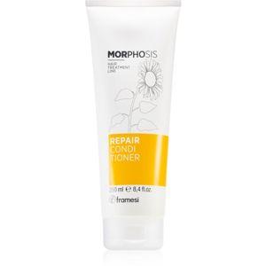 Framesi Morphosis Repair vyživující kondicionér pro jemné až normální vlasy 250 ml